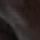 Sabretooth 1/6.
